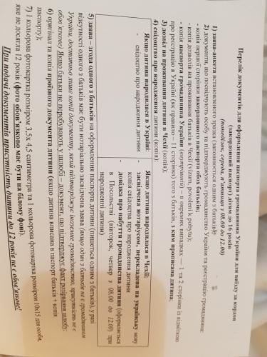 Электронная подача документов на загранпаспорт
